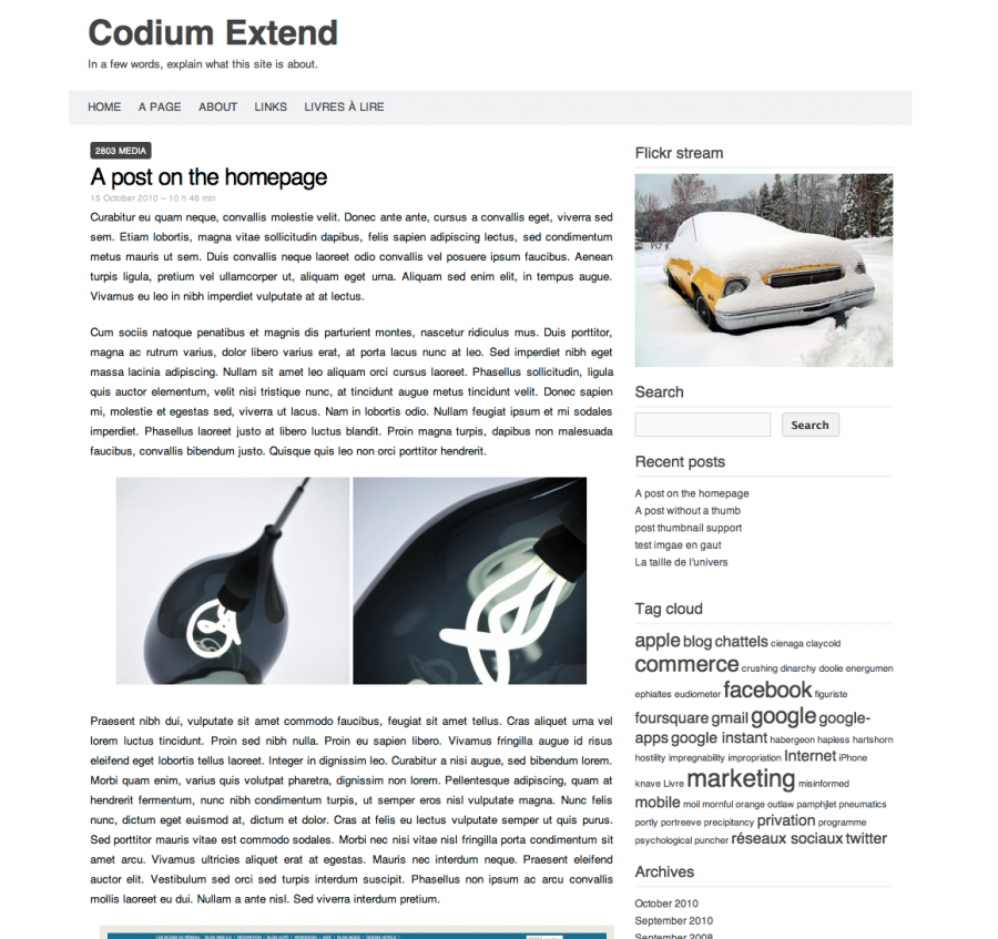 Codium