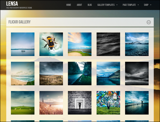 Website image gallery
