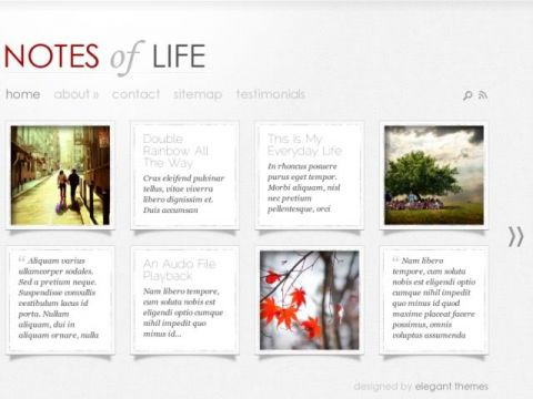 Daily-Notes-Elegant-Themes
