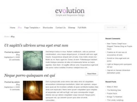 Evolution-Elegant-Themes