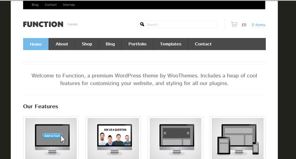 Function-WooThemes