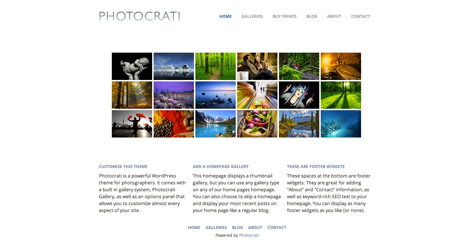 Photocrati Lightbox - Photography WordPress Theme