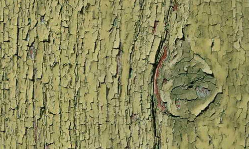 Green Painted Wood1 by LittleBlueStocking