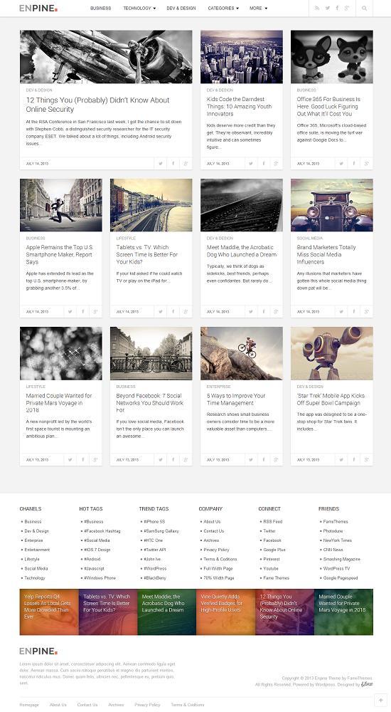 Enpine-FameThemes-WordPress-Theme