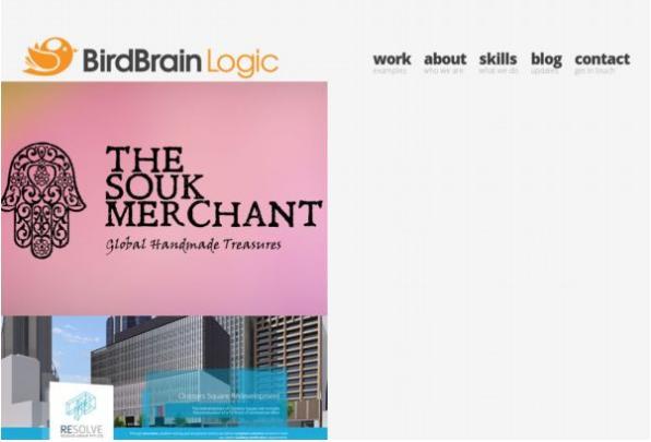 #6 BirdBrain Logic
