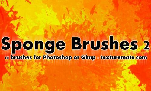Sponge 2 Brush Pack