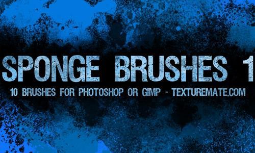 Sponge Brushes 1