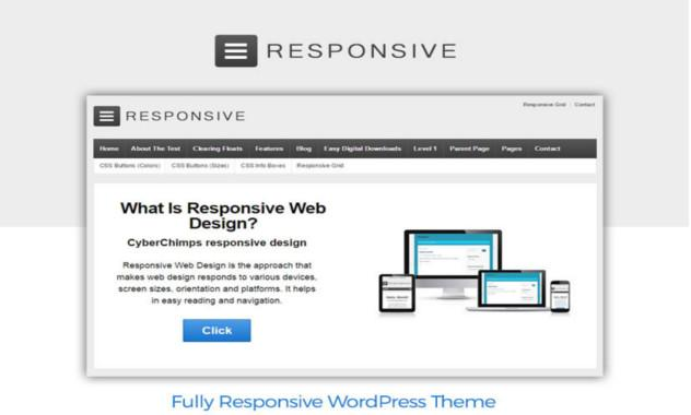 3. Responsive and fluid WordPress theme