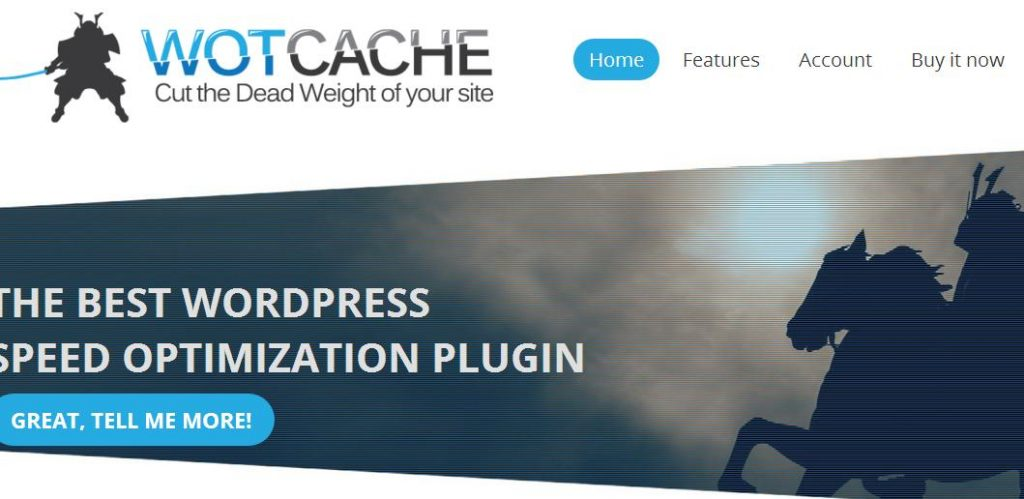 If you have tried everything and are in search for the right kind of plugin that can truly manage your site speed, then we suggest the WOTCache.